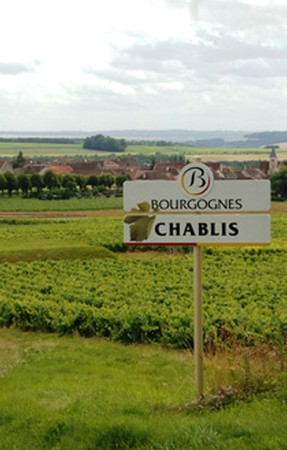 LEFT VS RIGHT BANK CHABLIS CASE