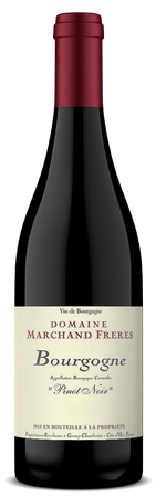 DOMAINE MARCHAND FRERES BOURGOGNE ROUGE 2017 CASE